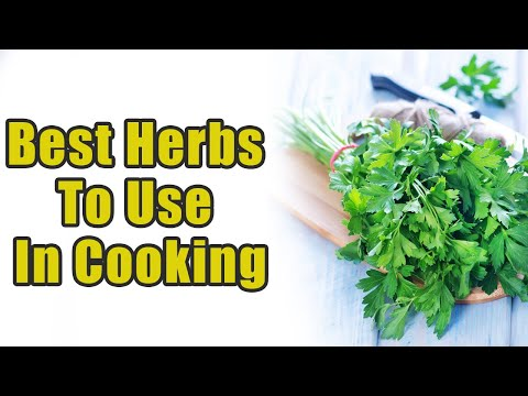 10 Best Herbs To Use In Cooking | Boldsky
