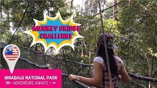 Kinabalu National Park Malaysia  city photos : Wanderlust Vlog 2 : Kinabalu National Park, Sabah (Malaysia) | Trangdaeu
