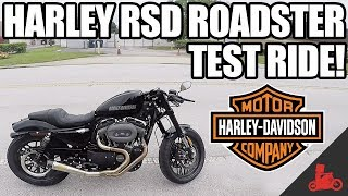 1. Harley-Davidson Roland Sands Roadster Test Ride! (2017)