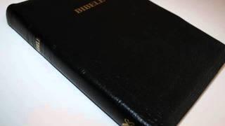 http://www.bibleinmylanguage.com/BIBELE-HALALELANG-Mongolo-wa-Rephavoliki-BIBLE-Southern-Sotho-Language-_p_451.html BIBELE HALALELANG ...