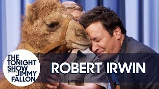 Video Robert Irwin's Baby Camel Kisses Jimmy on the Lips MP3, 3GP, MP4, WEBM, AVI, FLV Agustus 2019