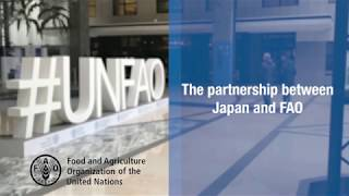 The FAO-Japan Partnership: Interview with Mr. Hiroto Mitsugi