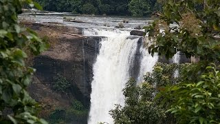 Athirapally India  city photo : Athirapally | Waterfall | Jungle Safari | Top Places to visit In India | Travel 4 All