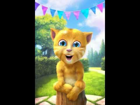 Mèo Ginger dạy m.n k đc nói dối:v (видео)