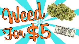 I BOUGHT WEED FOR $5 by Strain Central
