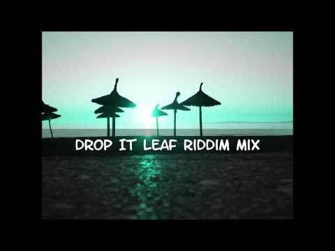 Drop Leaf Riddim Mix 2013