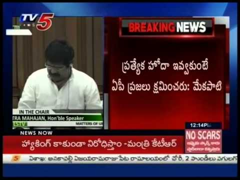 AP Ministers Demands Special Status To AP In Parliament Sessions