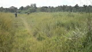 Cauayan Philippines  city images : LOT FOR SALE @ Cauayan City, Isabela, Philippines