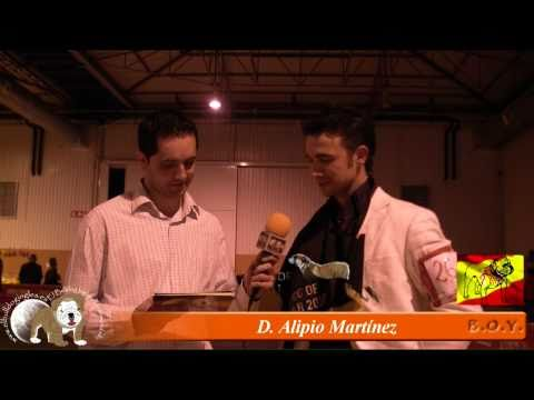 BOY 2010, Entrevista a Alipio (Delemavosbull)