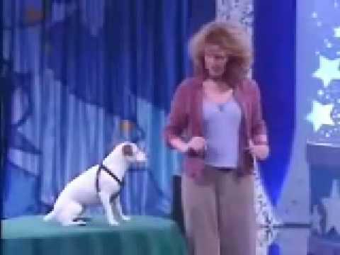 The Smartest Dog…E V E R !!!
