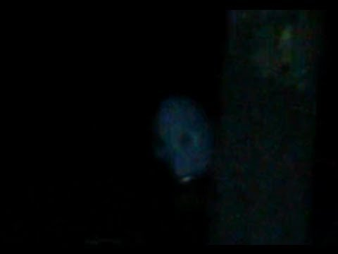 Strange creature caught on tape 26-27 September 2013
