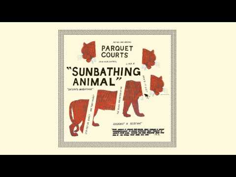 Parquet Courts - Sunbathing Animal [Audio]