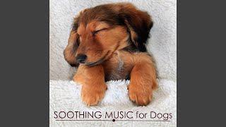 Sleeping Song