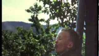 LANA DEL REY - TROPICO TRAILER