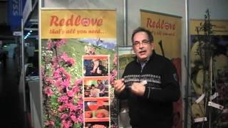 #284 Verwendung von Redloves® in der Küche