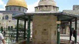 يوميات من المسجد الاقصى وجواره_1-3.flv