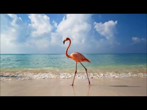 Keith Harris - Walk on the beach (Original mix)