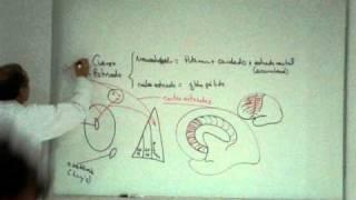 NEUROANATOMIA 2.0: CUERPO ESTRIADO Parte 1