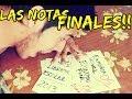 HORROR! LAS NOTAS FINALES!! │ #brunoacme