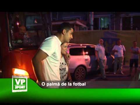 O palmă de la fotbal