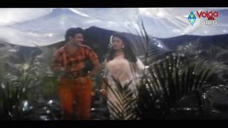 Top Hero Songs - Okkasaari - Nandamuri Balakrishna, Soundarya - HD
