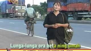 NGAWIN TANGGA - ITY ASHELLA