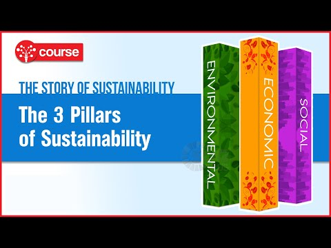 Episode 6: The 3 Pillars of Sustainability | Sustainable Development | SDG Plus