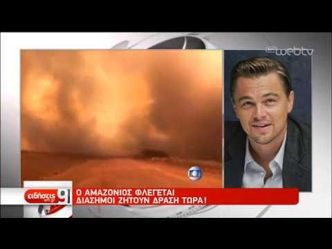 Πύρινη κόλαση στον Αμαζόνιο | 23/08/2019 | ΕΡΤ
