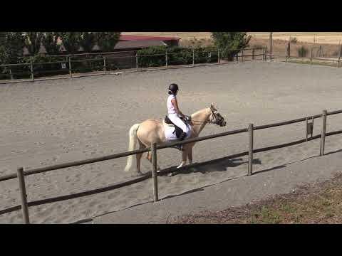 Doma Tafalla 290619 Video 3