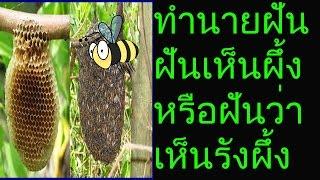 ฝันเห็นผึ้ง หรือฝันเห็นรังผึ้ง ตามตำราโบราณทำนายไว้ว่า ท่านจะได้รับความเดือดเนื้อร้อนใจ ภายในครอบครัว หรือภายในวงงาน แต่ถ้าฝันเห็นรังผึ้ง ท่านกำลังจะมีโชคลาภ ครอบครัวจะมีความสุข จะหมดความกังกลใจ อาจจะมีคนรู้จักหรือญาติมิตรที่อยู่ไกล เดินทางมาเยี่ยมเยียน ท่านควรระมัดระวังเงินทองอาจสูญหายได้ค่ะดวงความรักท่านที่ยังโสด ระวังจะไปชอบคนที่มีเจ้าของแล้ว และอาจจะทำให้เกิดความขัดแย้งกันได้ค่ะ ท่านที่มีคู่แล้ว มีเกณฑ์ที่จะพบปัญหาไม่เข้าใจกัน และบันดาลโทสะได้ง่ายๆ ให้ระมัดระวังอารมณ์ให้ดีค่ะดวงการเงิน การงานถ้าท่านจะ ริเริ่มทำการใดๆ อย่านั่งรอแค่หวังน้ำบ่อหน้า เพราะอาจจะไม่ได้อย่างที่ใจเราต้องการท่านมีโอกาสเกิดปัญหาเงินขาดได้ ควรประหยัดไว้ก่อน ช่วงนี้รายรับราย จ่ายอย่าให้คนอื่นดูแลให้ เพราะอาจจะโกงเงินคุณไปได้อย่างง่ายดายค่ะ;'เลขเด็ดเลขมงคล  13  16  136  139  237  #ตัวเลขบอกเหตุ นี้ ขึ้นอยู่กับวิจารณญาณของแต่ล่ะบุคคลค่ะ#ขอให้ทุกท่านโชคดีมีชัย ร่ำรวยเงินทอง ร่ำรวยความสุข ทุกๆท่านเลยนะค่ะ อย่าลืม! ถ้าคุณชอบช่วยกด like. หรือ subscribe เพื่อเป็นกำลังใจให้พวกเราด้วยค่ะ...ขอบคุณค่ะ....ขอบคุณข้อมูลบางส่วนจาก:  http://goo.gl/vge5llSubscribe to vichita Prophetic dreams ทํานายฝันพร้อมเลขเด็ดYoutube : https://goo.gl/bcelILTwitter : https://goo.gl/qoDuy7Facebook : https://goo.gl/NeF9ixGoogle Plus : https://goo.gl/EtKwY0pinterest : https://goo.gl/2WC080