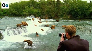 Video Katmai National Park MP3, 3GP, MP4, WEBM, AVI, FLV Agustus 2017