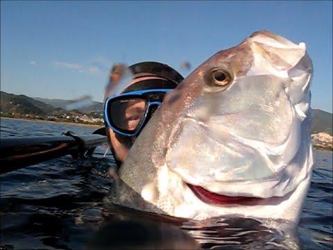 Pescasub: Top Ten - Il meglio del 2010