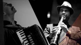 Robindro Nikolic & Ermes Pirlo (clarinetto - fisarmonica)Concerto nella serata dedicata all'accoglienza; 22 di Febbraio 2017; Scuola Media 'E.Rinaldini', FLERO, Italia