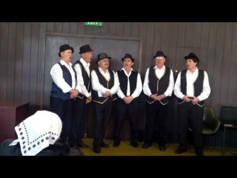 Oj, oj Banijo - peva muška pevačka grupa ZU BANIJA iz Beograda