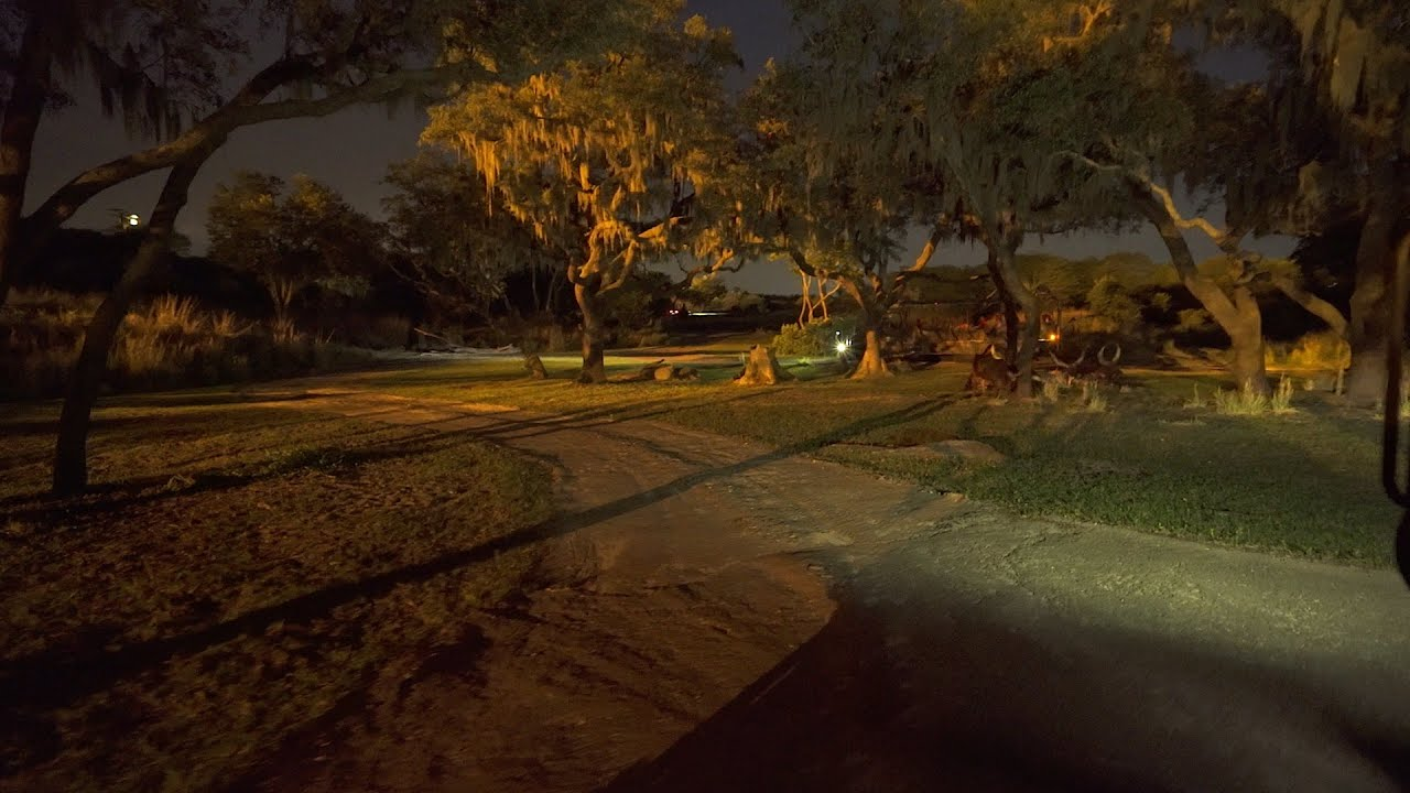 Ride through of Kilimanjaro Safaris at night