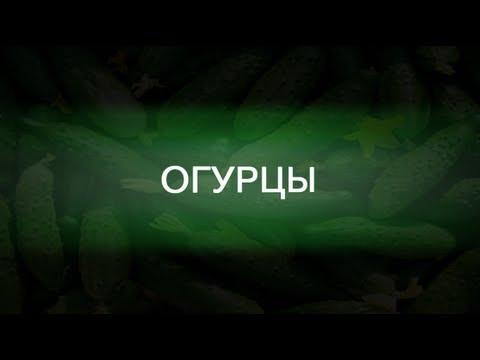 Тактики боя от Огурцов (PROMO)