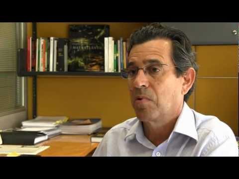 Vídeo: Xico Graziano Falo sobre o Novo Código Florestal