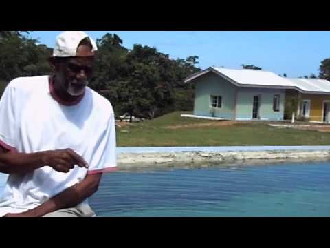Usha Healing Waters Dr Sebi.mov