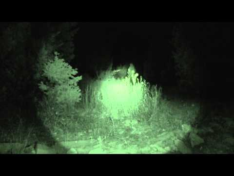 Rough Hollow post log to possible Skin walker encounter 10/18/13