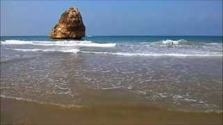 This Is A VeDIO fOR tHE lOvers Of The Beach And Fun