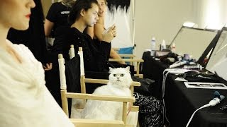 Fancy Feast And STYLE360's NY Fashion Week Behind The Scenes