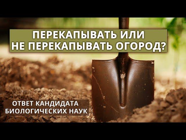 Нужно ли перекапывать почву в огороде?