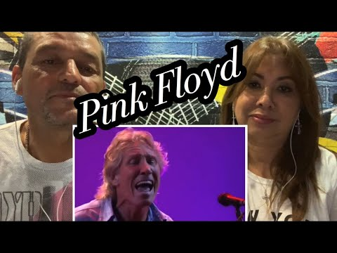 Pink Floyd - Comfortably Numb ( Recorded At Live 8) Reaction