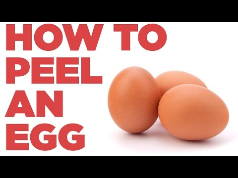 Video How To Peel An Egg Like A Boss | Foodbeast Labs download in MP3, 3GP, MP4, WEBM, AVI, FLV January 2017