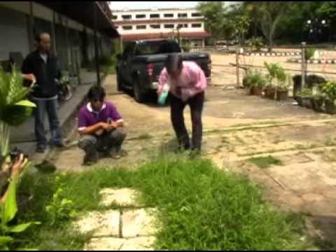 ชีวภัณฑ์ ยาฆ่าหญ้าปลอดสารพิษ