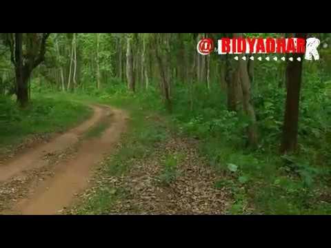 Video Adivasi ho munda romantic video. download in MP3, 3GP, MP4, WEBM, AVI, FLV January 2017