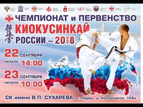 Чемпионат и первенство России по киокусинкай 2018. Татами В - DomaVideo.Ru