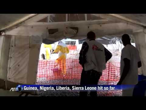 Ebola virus disease has caused the death of hundreds of people in Western Africa since the beginning of 2014.