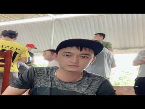 New amazing horse donkey and zebra mating video 2020 best compilation  R