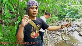 Download Video Mancing Ikan Di sarang Ular MP3 3GP MP4